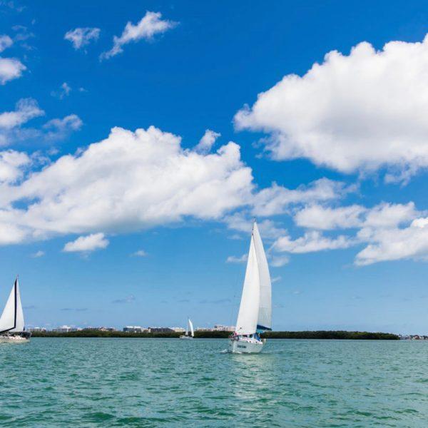 Gorgeous Day During A Sailing Regatta