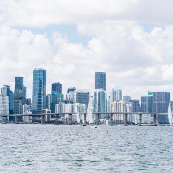 Miami Regatta And The Skyline