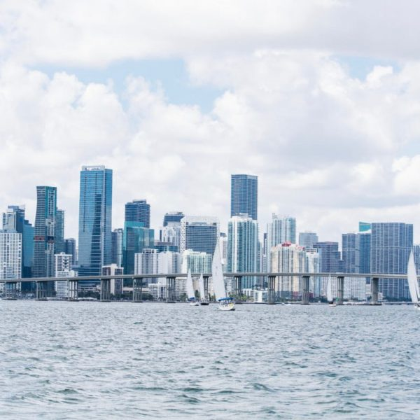 Miami Regatta And The Skyline